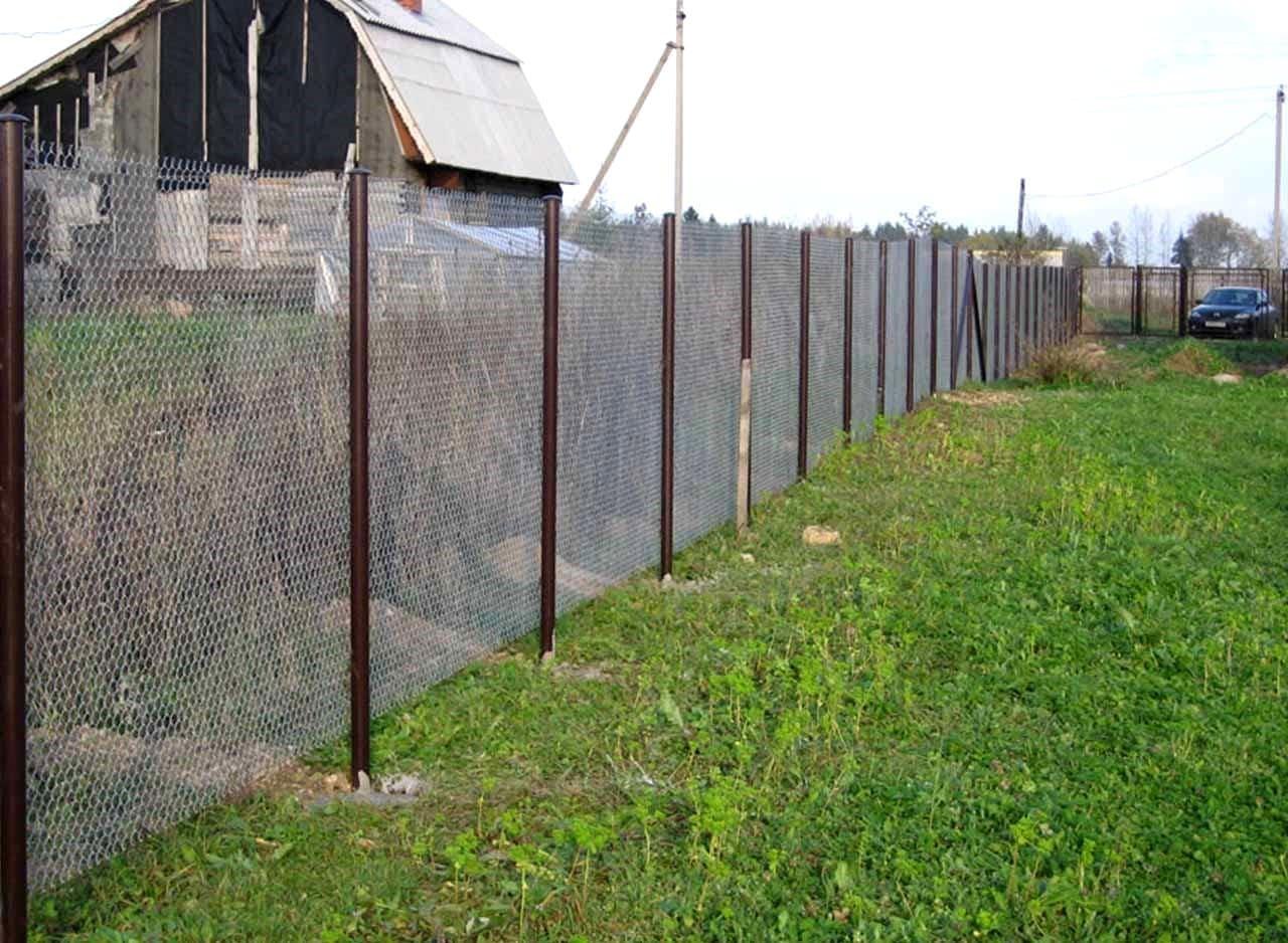 секции отвечают сетка рабица на дачном участке фото наша семья